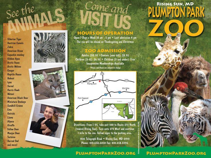 zoo brochure Google Search Diseño grafico, Libretas