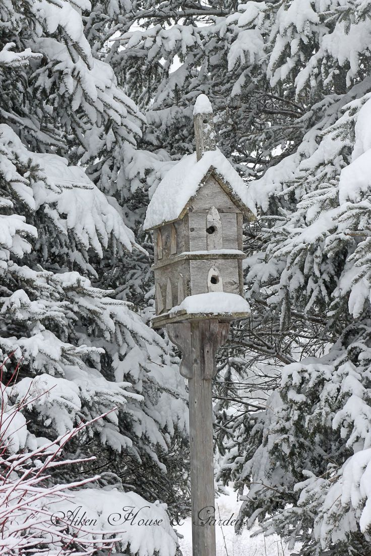 Winter With Old Wooden Church Birdhouse And Snow Covered