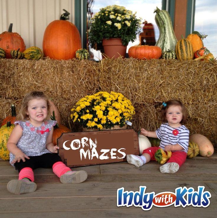 Corn Mazes in and near Indianapolis Corn maze, Fun
