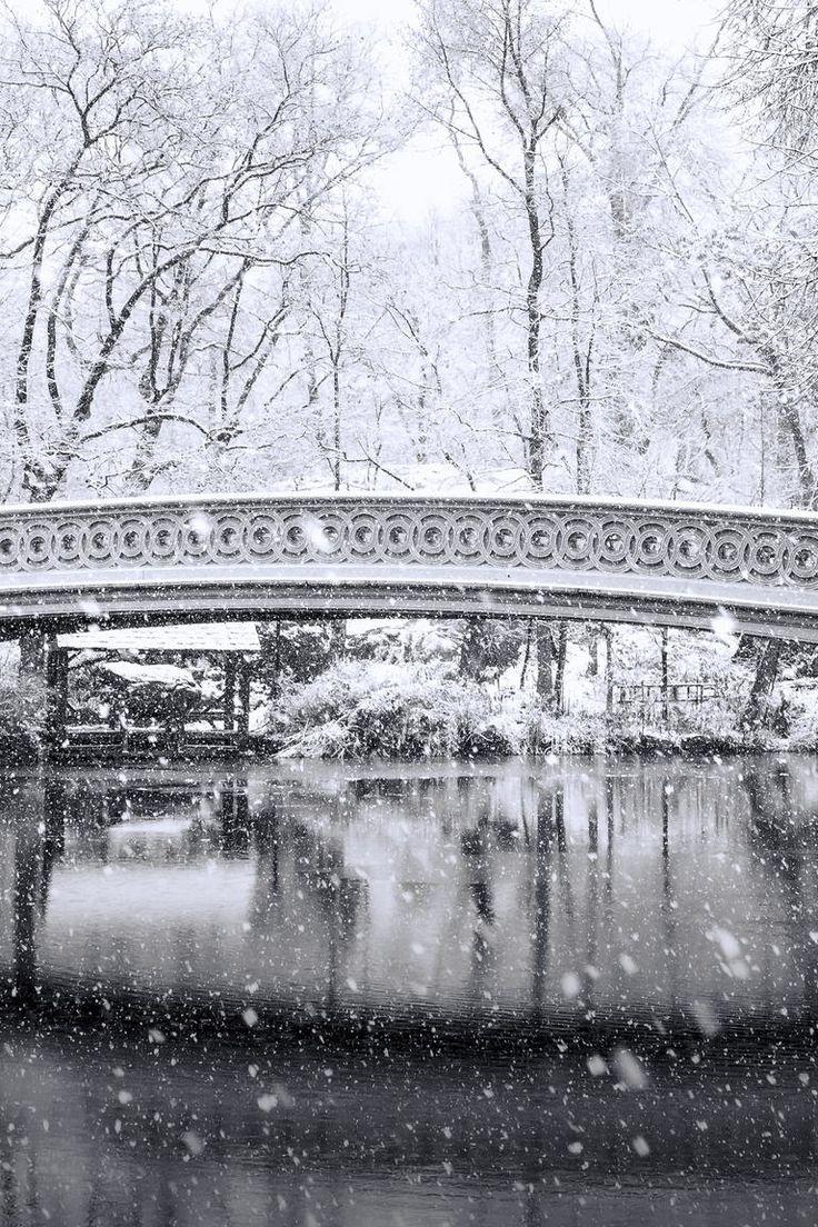 Central Park's Bow Bridge in the snow