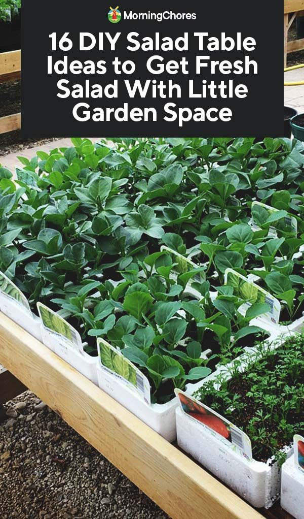 Pvc Gutters Recycled Into Planters Gutter Garden 1001 Gardens Vertical Vegetable Gardens Gutter Garden Vertical Herb Garden