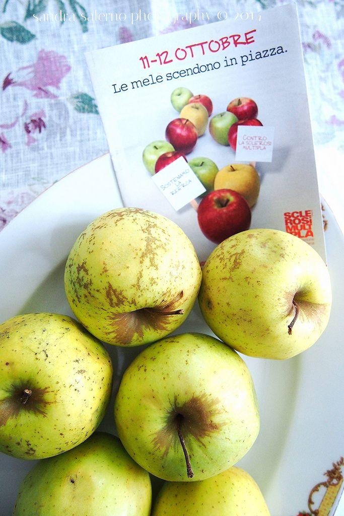 La mela di AISM, in tutte le piazze D'Italia, l'11 e 12 Ottobre. Diamo una mano a favore della ricerca @AISM_onlus