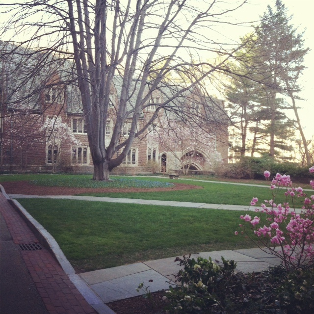 Old Room At Dusk: 99 Best Images About WELLESLEY. COLLEGE On Pinterest