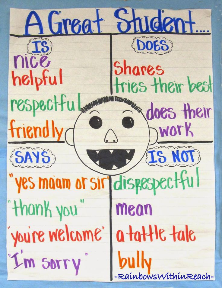 """No David"" Anchor Chart: 'A Great Student' via RainbowsWithinReach"