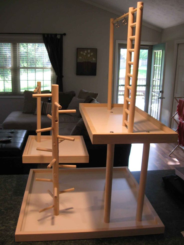 bird play gym ideas..really for a squirrel maybe?!?