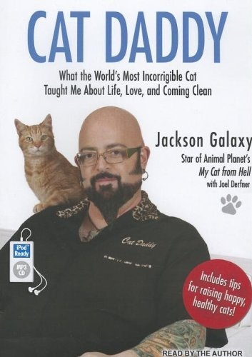 17 best images about i forgot how to cat on pinterest for Jackson galaxy images