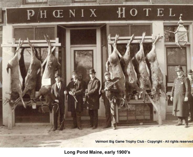 Maine deer hunting. No camo here......
