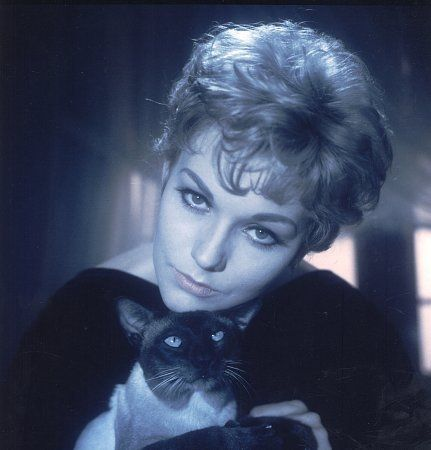 The beautiful Kim Novak as the witch Gillian 'Gil' Holroyd, from Bell Book and Candle (1958)