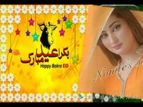 Hot mujra actress Qismat Baig Eid Mubaraik message