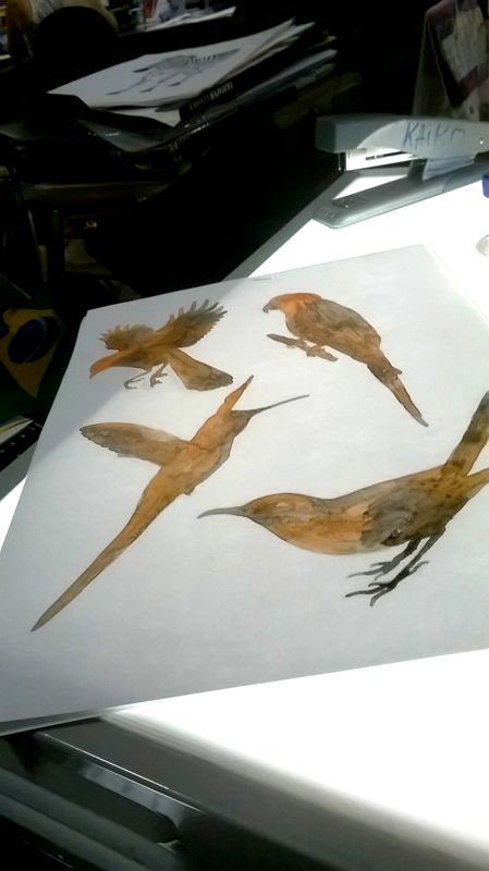Birds Watercolor - By KP