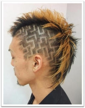 89 best images about Mohawks on Pinterest