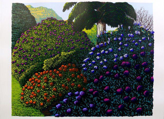Karl Maughan 'Karori (purple)'