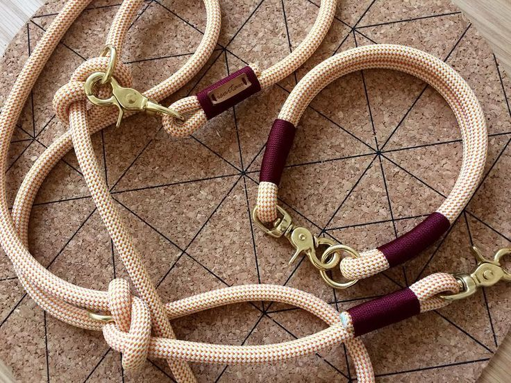 "isartau på Instagram: ""Ronja likes it #classy 👐 www.isartau.de - munichmade dog leashes | manufactured with love #isartau #collar #leash #dogleash #doglead…"""