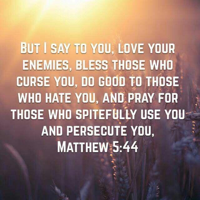 Bible Quotes Enemies: 65 Best Matthew 5:44 Images On Pinterest