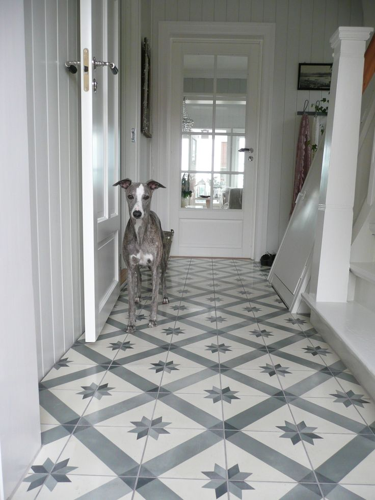 Beautiful tiled floor in entry (and a pretty dog!)