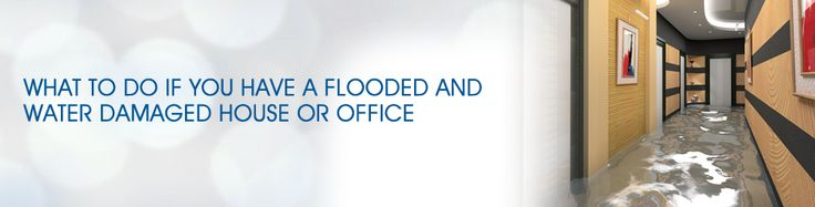 Hire the services of Capital Facility Services to deal with your flooded carpet. Here we make sure to clean carpet from every corner and niche to avoid growth of bacteria.