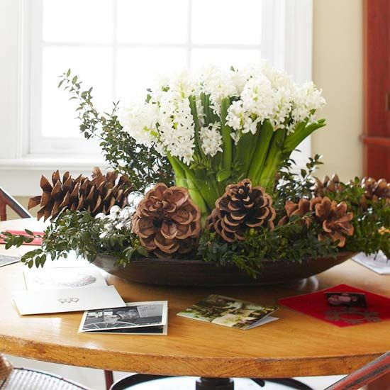 Festive flower arrangement composed of white hyacinths, bridal veil vines and pine cones