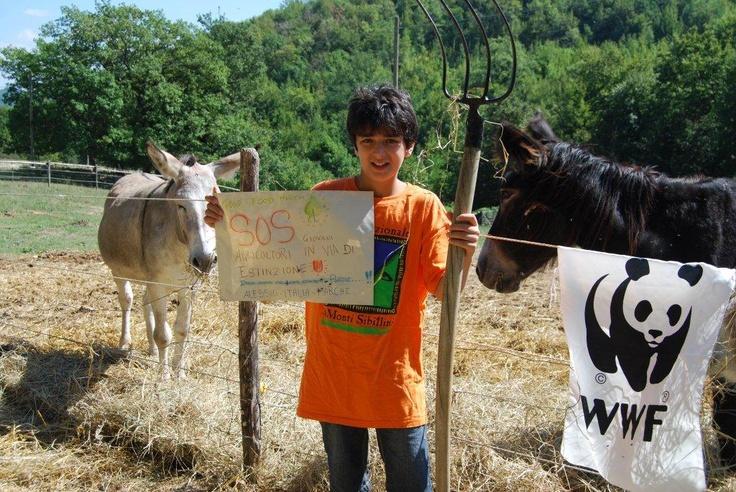 Riforma della PAC: alla Good food March per chiedere una agricoltura sostenbile