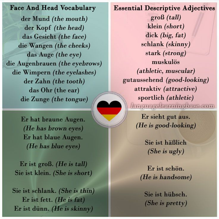German Vocabulary All About Physical Appearance Learn German