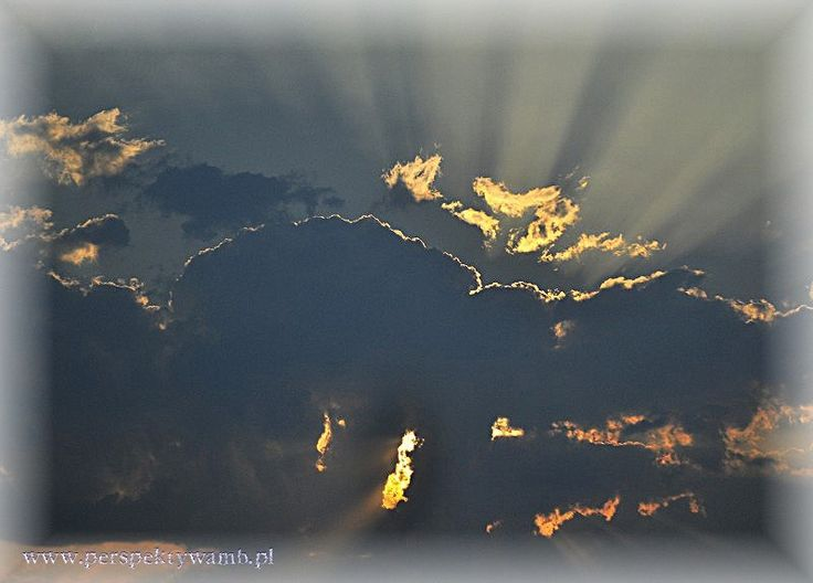 ............................. - www.perspektywamb.pl