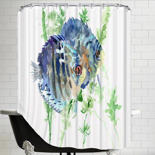 17 Best Ideas About Aquarium Fish On Pinterest Pretty
