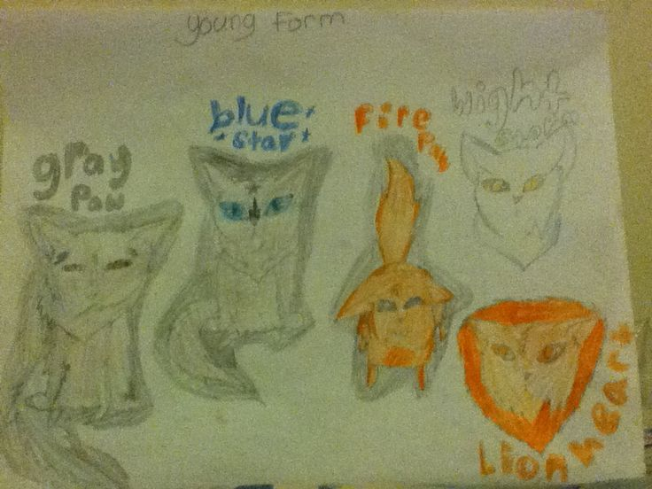 This is the old times of the warrior cats