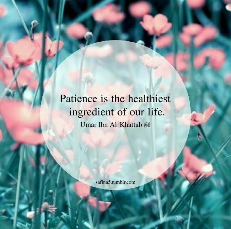 What is the most healthiest ingredient?   #Patience #Islam #Faith