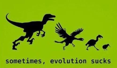 Devolution--it's for the birds.
