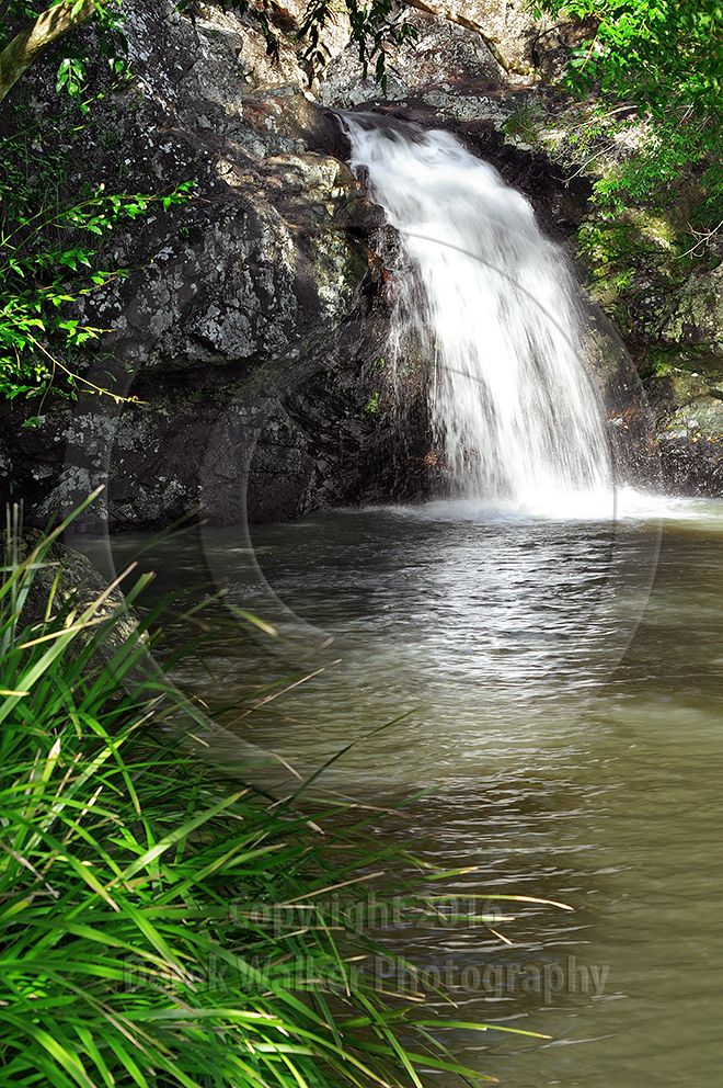 The waterfall at the swimming hole inside the Kondalilla National Park near Montville on the Blackall Range in south east Queensland, Australia. The National Park is most famous for the spectacular Kondalilla Falls amid lush rainforest (the word Kondalilla is Aboriginal for 'running water'), and is a popular retreat for visitors to the Sunshine Coast hinterland. For image licensing enquiries, please feel welcome to contact me at derekwalker73@bigpond.com  Cheers :)