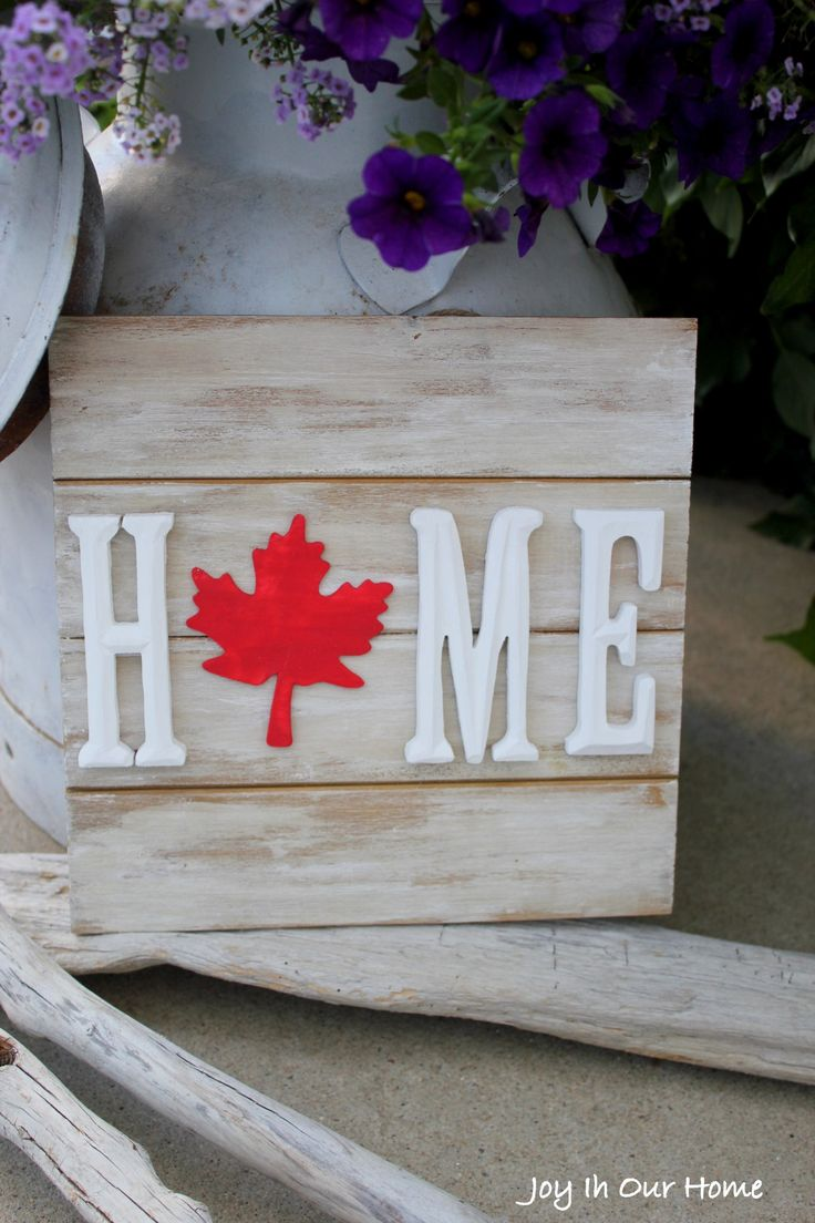 Preserved cypress bonsai 7 h contemporary phoenix by botanical - How To Make A Quick And Easy Canada Day Sign