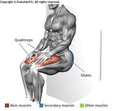 QUADRICEPS -  ISOMETRIC WALL SQUAT
