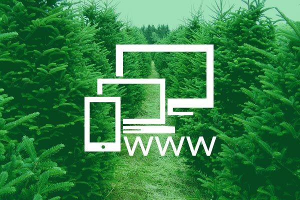 Piszemy o stronie internetowej dla Nordmann Lubuskie. Odpowiadamy także na pytanie: dlaczego strona www musi być responsywna?  --> https://roan24.pl/aktualnosc/plantacja-choinek-gorzow-strona-choinki-zywe/