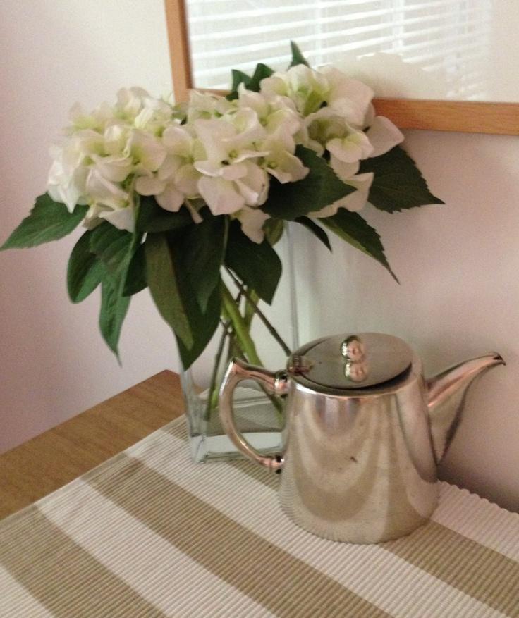 My teapot find