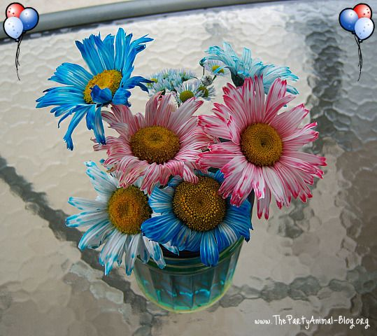 35 best how to dye flowers images on pinterest pretty flowers dye flowers by adding food coloring in water mightylinksfo