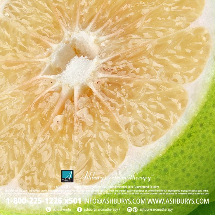 Grapefruit [Citrus paradisi] This crisp citrus oil is an anti-depressant that reduces stress with its uplifting and rejuvenating effects. Aids weight loss/cellulite/lymphatic drainage/fluid retention/digestion/premenstrual tension. Eases grief, resentment & envy. Relieves jet lag & migraines. #ashburysaromatherapy