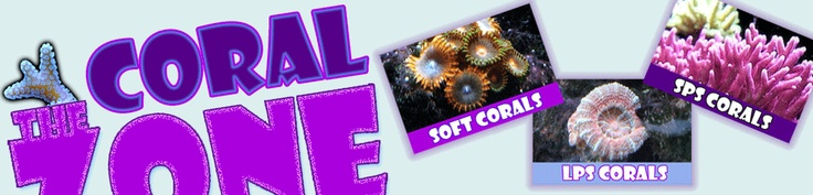 The Coral Zone - Soft Coral, LPS Hard Coral < SPS Hard Coral Care Information.