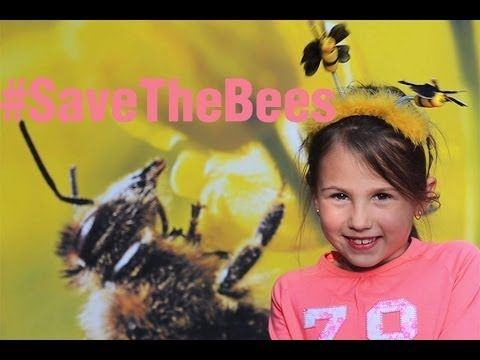 Global Day of Action - Save the Bees!