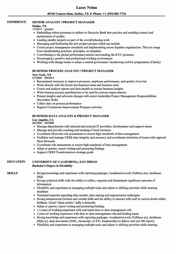Project Manager Job Description Resume Best Of Analyst
