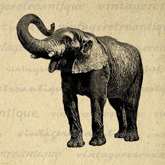vintage elephant clip art - photo #22