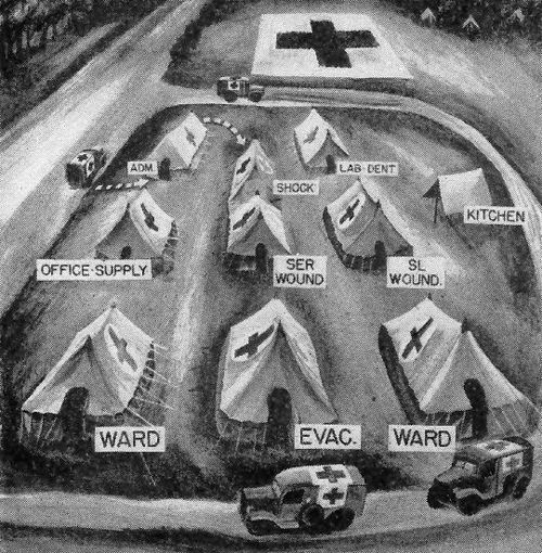 Brief Overview Of The Medical Department Ww2 Us Medical