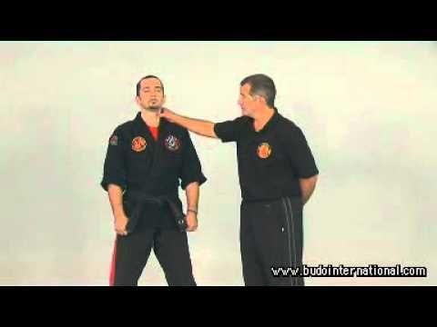 Kyusho Jitsu. Kyusho Top 10 points - YouTube
