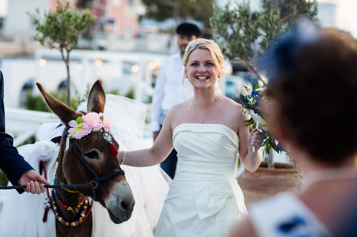 #PyrgosRestaurant team organize the #perfect #wedding #reception for you and your guests !! http://www.pyrgos-santorini.com/  #PyrgosRestaurant #santorini #wedding #weddingsantorini #photography #weddingday #weddingmemory #donkey #funy #entertaiment #instawedding #greekislands #greece #