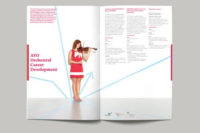 :: The AYO 2012 Applications Booklet ::