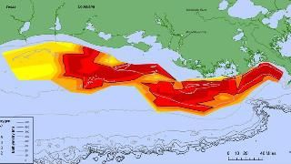 'Dead Zone' in Gulf of Mexico Large Enough to Fit Connecticut, Rhode Island Combined - weather.com