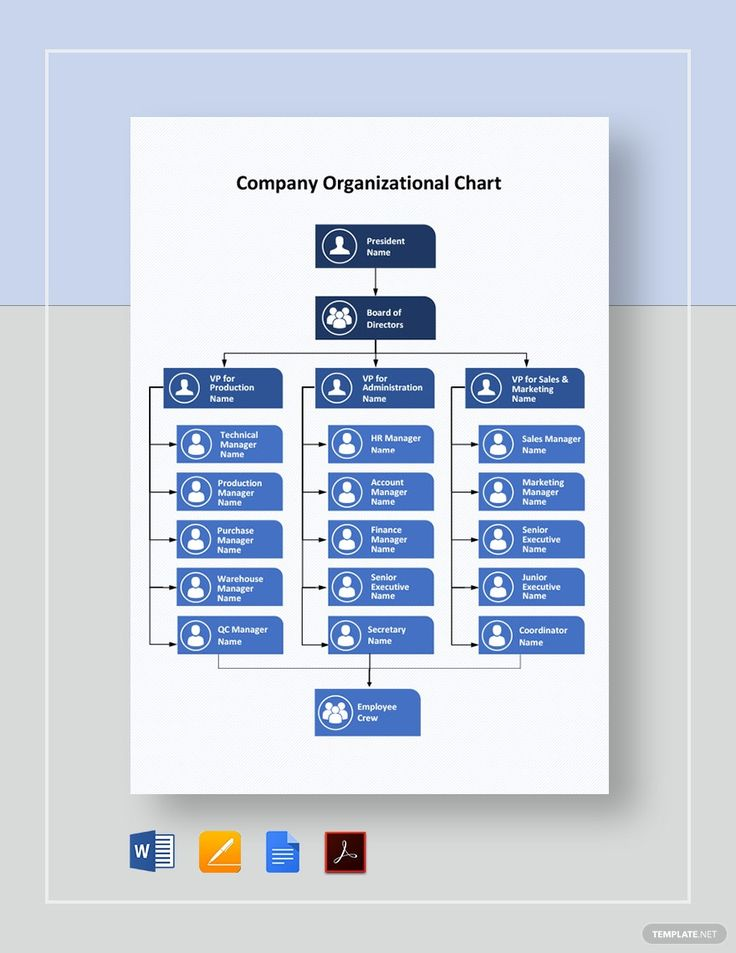 Company Organizational Chart Template Free Pdf Google Docs Word Apple Pages Template Net Organizational Chart Template Organizational Chart Bar Graph Template