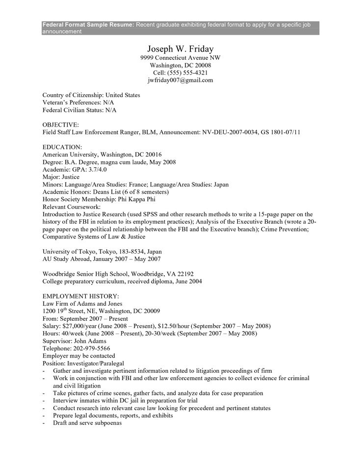 Federal Government Resume Example Federal Government