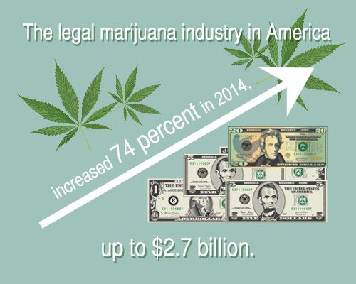 Line chart expressing the growth of the marijuana industry
