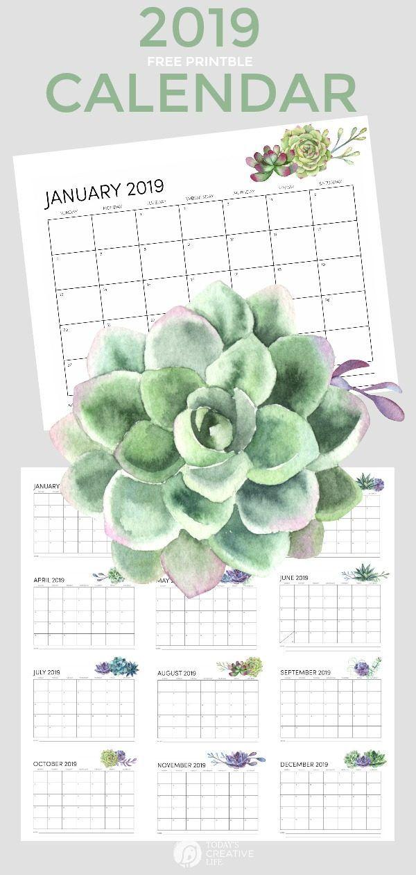 free printable calendar 2019 diy printable 2019 calendars