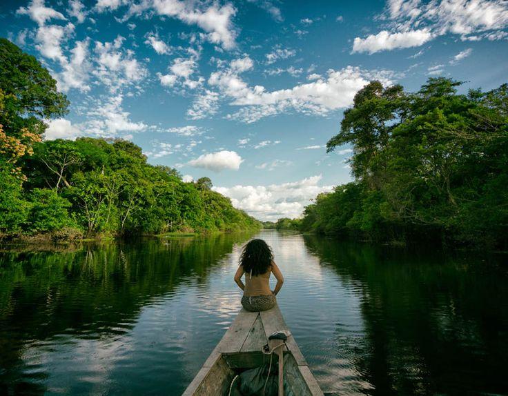 Preskúmať Amazónie v Južnej Amerike, Čo je najväčších dažďový prales na svete.  Odhaduje sa Mat 16.000 druhov stromov na 390 miliárd jednotlivých stromov