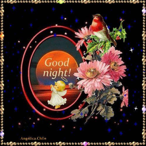 GOOD NIGHT DEAR FRIEND'S ~^~^~^